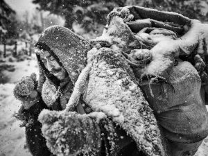 shepherd-snow-trek-iran_87542_990x742 (1)